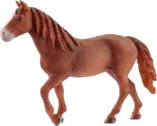 Schleich Farm World Pferde - 13870  Morgan Horse Stute, ab 3 Jahre