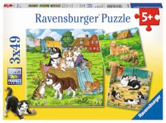 Ravensburger 08002 Puzzle: Süße Katzen und Hunde 3x49 Teile