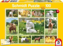 Schmidt Puzzle 56194 Tierkinder auf dem Bauernhof, 100 Teile, ab 6 Jahre