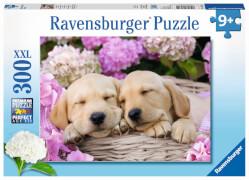 Ravensburger 13235 Puzzle Süßes Hundefoto 300 Teile