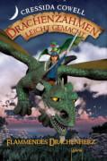 Arena - Drachenzähmen leicht gemacht Band 08 Flammendes Drachenherz, Lesebuch, 296 Seiten, ab 10-12 Jahren